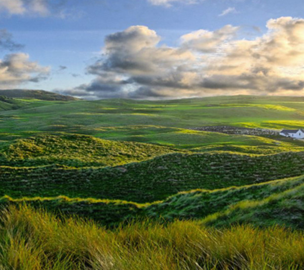 Beautiful Meath Countryside